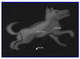 estrela sirius 7