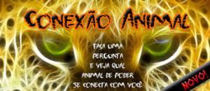 animal3